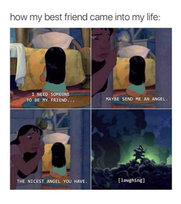 My Best Friend Funny Meme : Fully investing in your friendships simply whitney